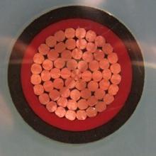 铜芯交联聚乙烯绝缘聚氯乙烯护套电力电缆