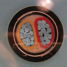铝合金导体交联聚乙烯绝缘双钢带铠装聚乙烯护套电力电缆