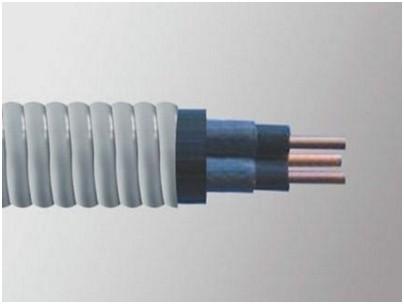 聚酰亚胺-F46复合膜F46组合绝缘及铅(铅合金)裸钢带连锁铠装潜油泵控制电缆