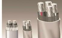 铝合金导体交联聚乙烯绝缘聚氯乙烯护套阻燃C类耐低温电力电缆