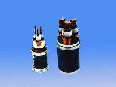 铜芯交联聚乙烯绝缘非磁性金属带铠装聚乙烯护套电力电缆YJY63