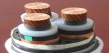 铜芯交联聚乙烯绝缘细圆钢丝铠装聚乙烯护套电力电缆