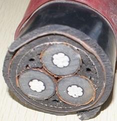 铝芯交联聚乙烯绝缘粗圆钢丝铠装聚氯乙烯护套电力电缆