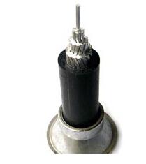 铝芯聚氯乙烯绝缘架空电缆