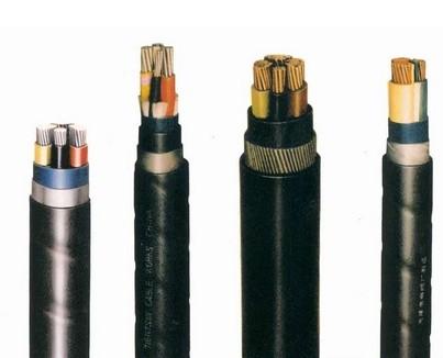 铜芯聚氯乙烯绝缘聚乙烯护套电力电缆