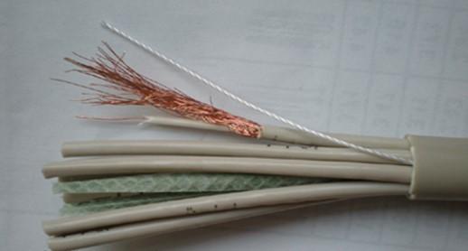 铜芯聚酰胺绝缘聚氯乙烯护套非屏蔽型局用对称电缆