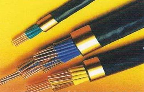 铜芯聚酰胺绝缘聚氯乙烯护套屏蔽型局用对称电缆