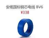 安缆 BV6 平方