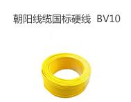 朝阳线缆BV10平方国标铜芯电线家装硬线