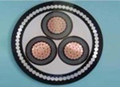 铜芯交联聚乙烯绝缘细圆钢丝铠装聚氯乙烯护套电力电缆