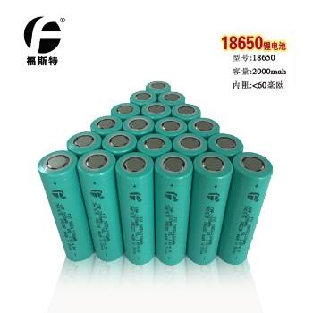 官方直销福斯特长江18650锂电池 移动电源强光等平头数码2200mah
