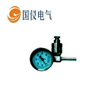 【国仪电气】带热电偶、热电阻双金属<span style='color:red;'>温度</span>计